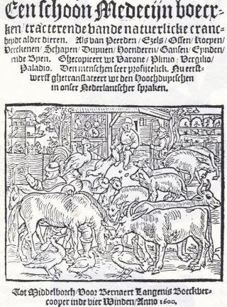 'Schoon Medecijnboecxken, tracterende vande natuerlicke crancheydt alder dieren' - De saaie preutsheid van het Victoriaanse tijdperk ligt ver achter ons maar in de moderne wetenschappelijke literatuur merken we daar echter weinig van. Dat dat ooit anders was lezen we in een der oudste Nederlandstalige veeteeltkundig-diergeneeskundige handboeken, het 'Schoon Medecijnboecxken, tracterende vande natuerlicke crancheydt alder dieren', uitgegeven door Bernaert Langenis in 1600. Het is op haar beurt, zoals het titelblad vermeldt: 'Ghetranslateert uut den Hoochduytschen in onser Nederlantscher Spraken.' Het oorspronkelijke Duitse werk, in 1530 gedrukt in Straatsburg, werd zoals in de Nederlandse versie te lezen valt, 'ghecopieert uut Varone, Plinio, Vergilio en Palladio.' Vrijwel alle informatie in dit 60 pagina's tellende boekje is inderdaad, zij het meer uitgebreid, te vinden in de lijvige en vaak goed onderbouwde Romeinse standaardwerken gewijd aan landbouw en veeteelt.