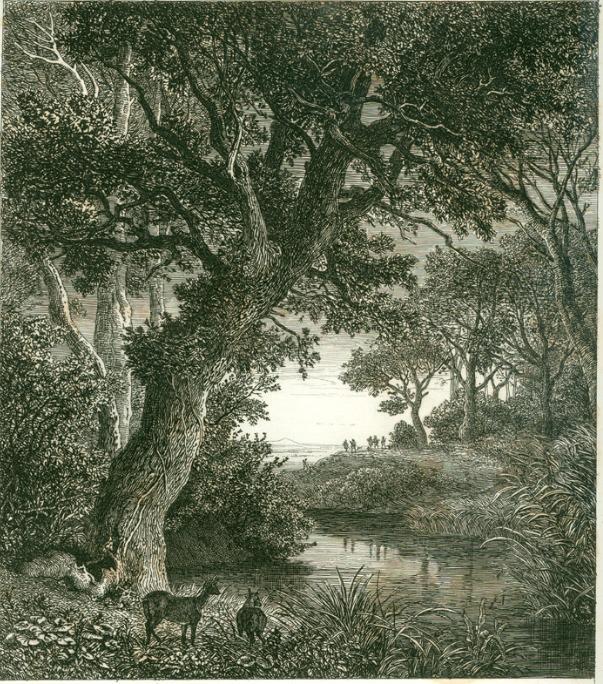 Ets van Johann Wilhelm Schirmer (1807-1863)