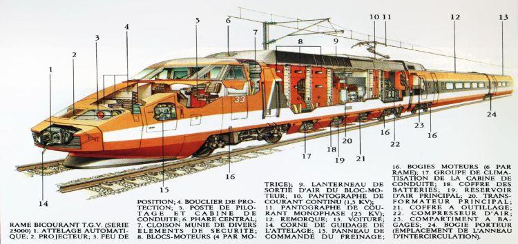 Doorsnede van de TGV PSE, ca. 1981   bron onbekend