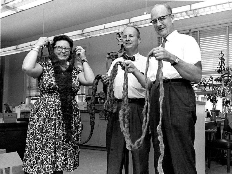 Medewerkers van het Smithonian Instituut met de baard van Hans Langseth (Foto Smithsonian)