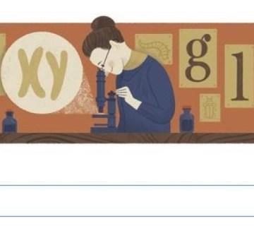Nettie Stevens, ontdekker van de geslachtschromosomen