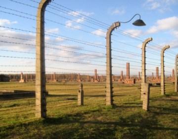 Auschwitz - cc