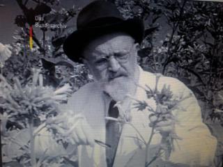 Professor Koenig