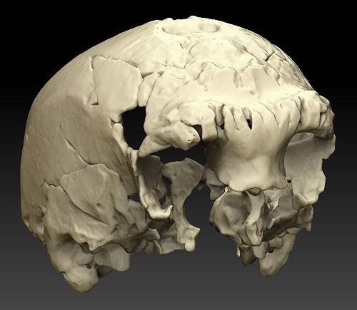 De Aroeira-schedel (Universiteit van Barcelona)
