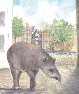 De tapir van 1704, naast de herberg De Witte Oliphant, met op de achtergrond de Amstel. Afbeeldingen: Exotische dieren in historisch Amsterdam