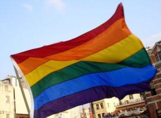 De regenboogvlag van de homobeweging - cc