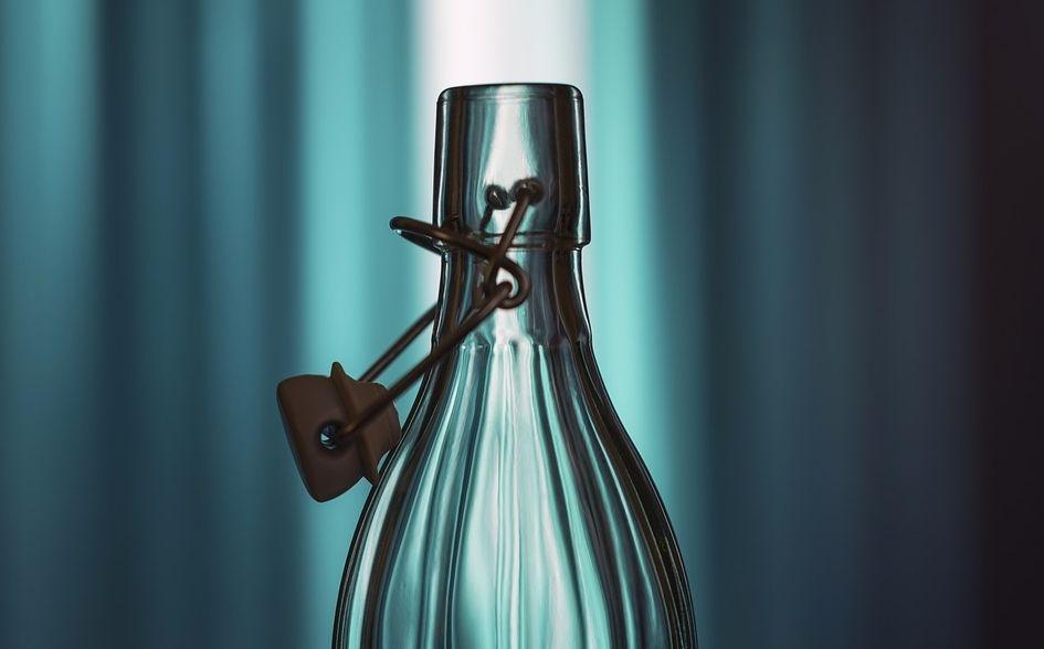 De geest uit de fles - Hoe de moderne mens werd wie hij is