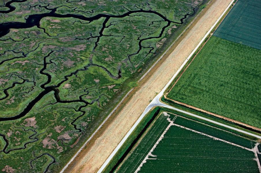 Het Verdronken Land van Saeftinghe (links) in Zeeuws-Vlaanderen, grenzend aan landbouwgrond.