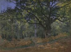 Claude Monet; The Bodmer Oak, Fontainebleau Forest; 1865; oil on canvas; 96.2 x 129.2 cm; The Metropolitan Museum of Art