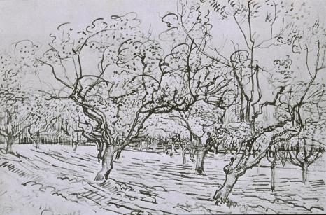 Vincent van Gogh; Orchard in the Provence; 1888; 39.5 x 54 cm