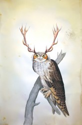 """Justin Gibbens Bird of Paradise XVII- Great Horned Owl Watercolor, graphite, gouache, ink, oolong tea on paper 2008 40"""" x 26"""""""