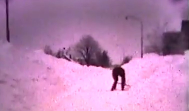 Meeden,  film extreme winter 1979