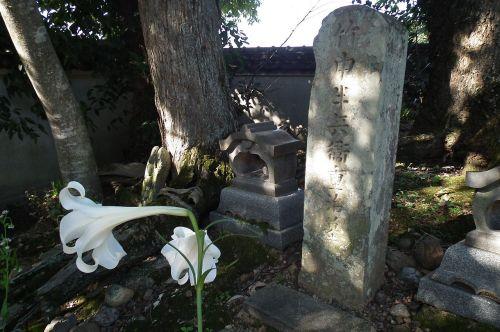 出典:竹中重治 - Wikipedia