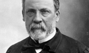 Claude Bernard Biography