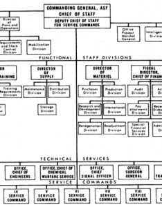 Chart organization of the army service forces august also chapter ii marshall reorganization rh historymy