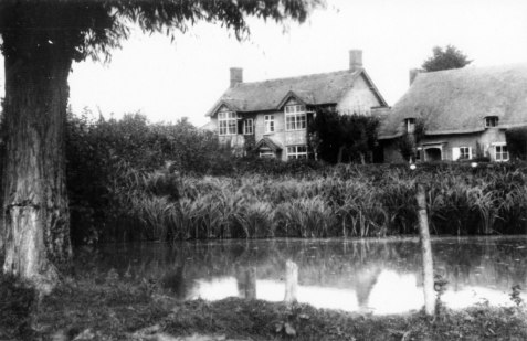 Primrose Villa and Cottages