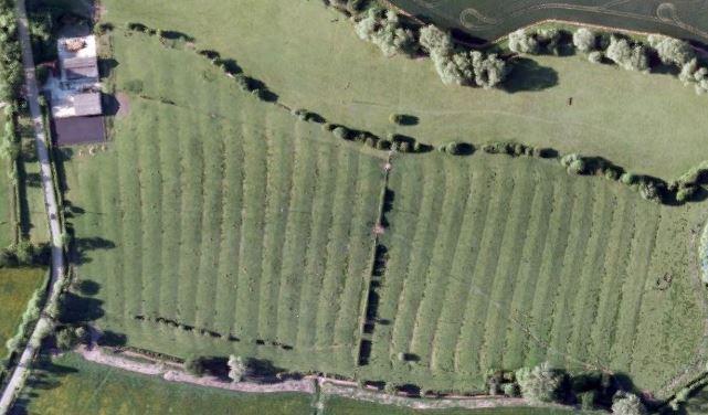 Ridge and Furrows, Poplars Farm