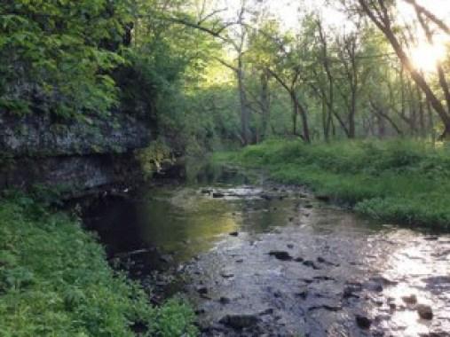 Hall Creek
