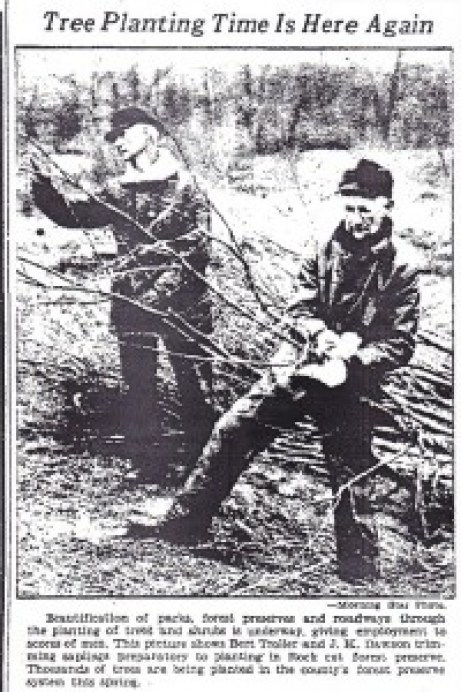 Rock Cut 1935
