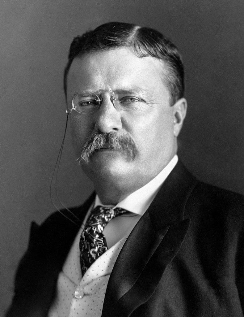 Portrait of President Theodore Roosevelt
