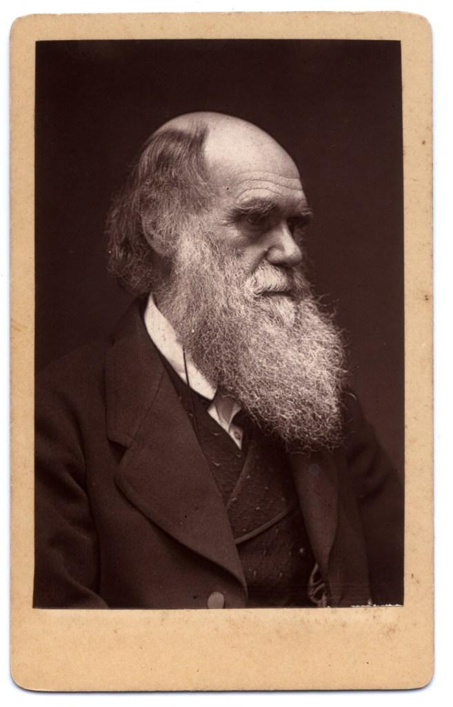 Charles Darwin in 1874