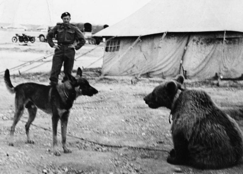 Wojtek and dog