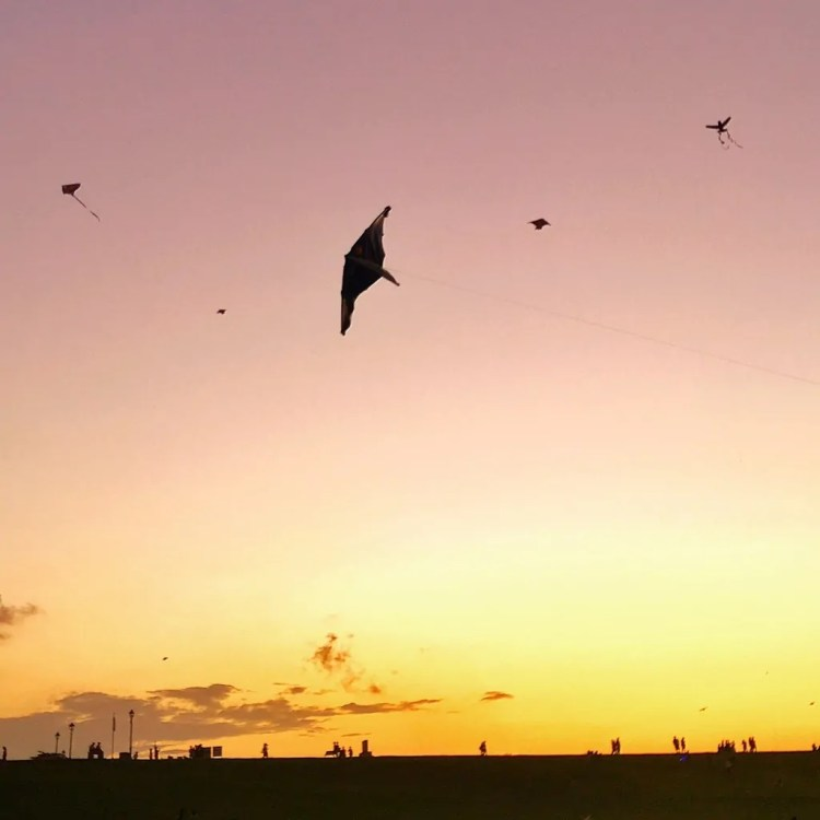 A kite in Puerto Rico