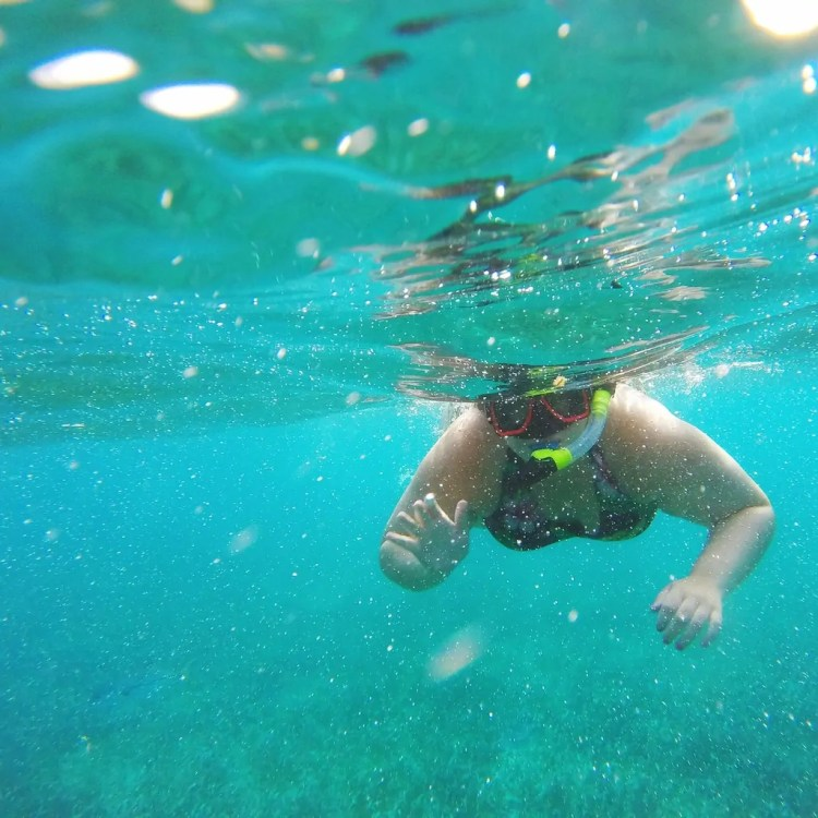 Belize - Ambergris Caye - Snorkeling