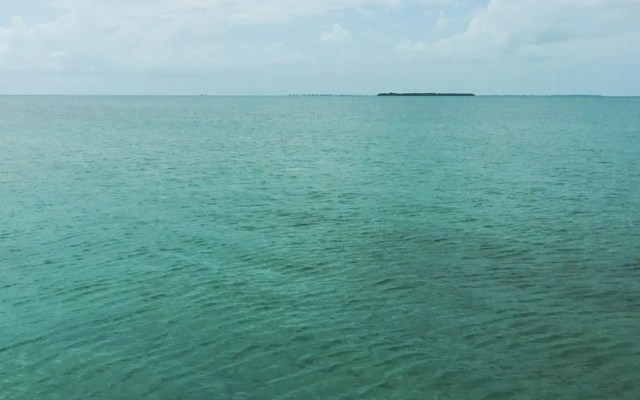 View of a mangrove island from Secret Beach in San Pedro, Belize