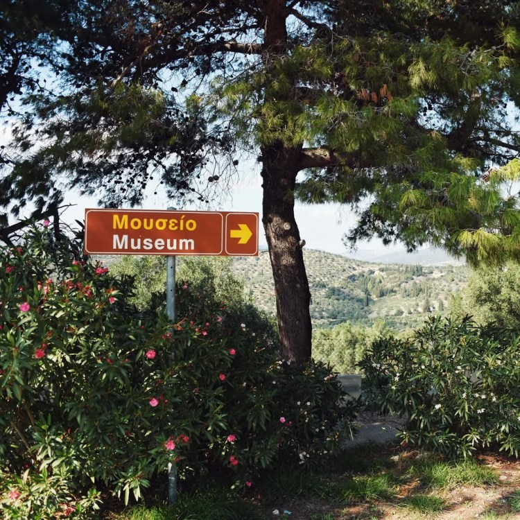 This way to the Museum