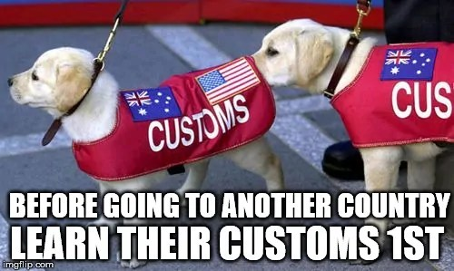 travel customs meme