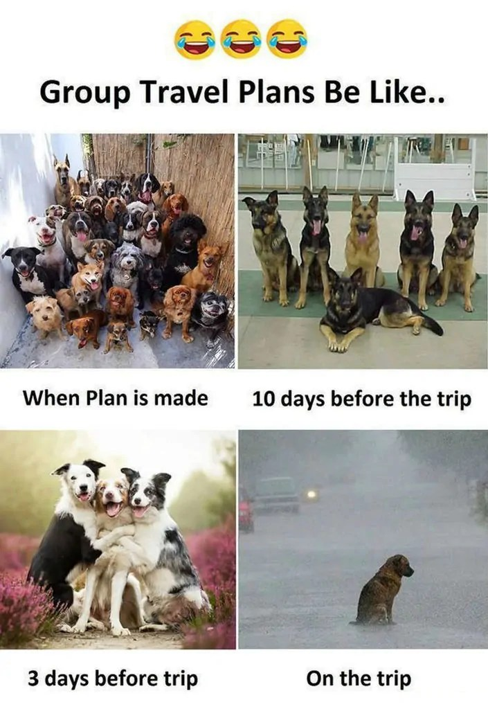 54d11a1604fc0 101 Hilarious Travel and Vacation Memes for Every Kind of Traveler ...