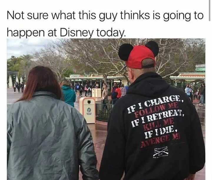Disney World Travel Meme