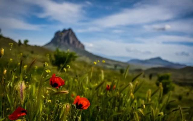 75 Epic Reasons You Need to Travel Azerbaijan
