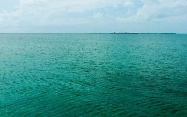 A mangrove island off Secret Beach