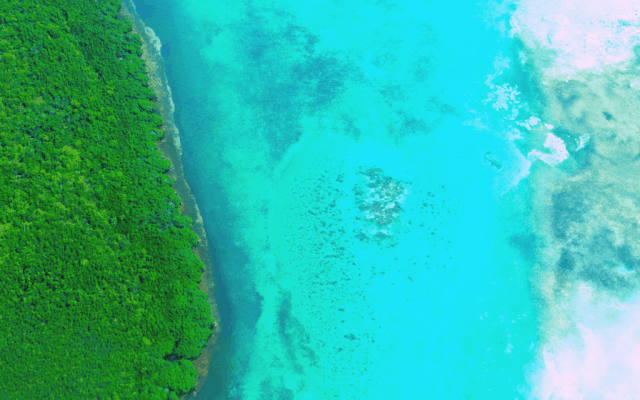 10 Spectacular Belize Beaches for Your Caribbean Getaway