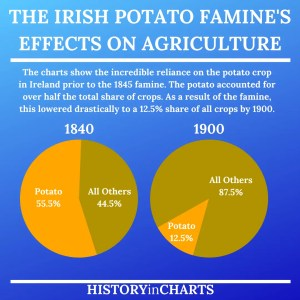 Read more about the article The Aftermath of the Irish Potato Famine