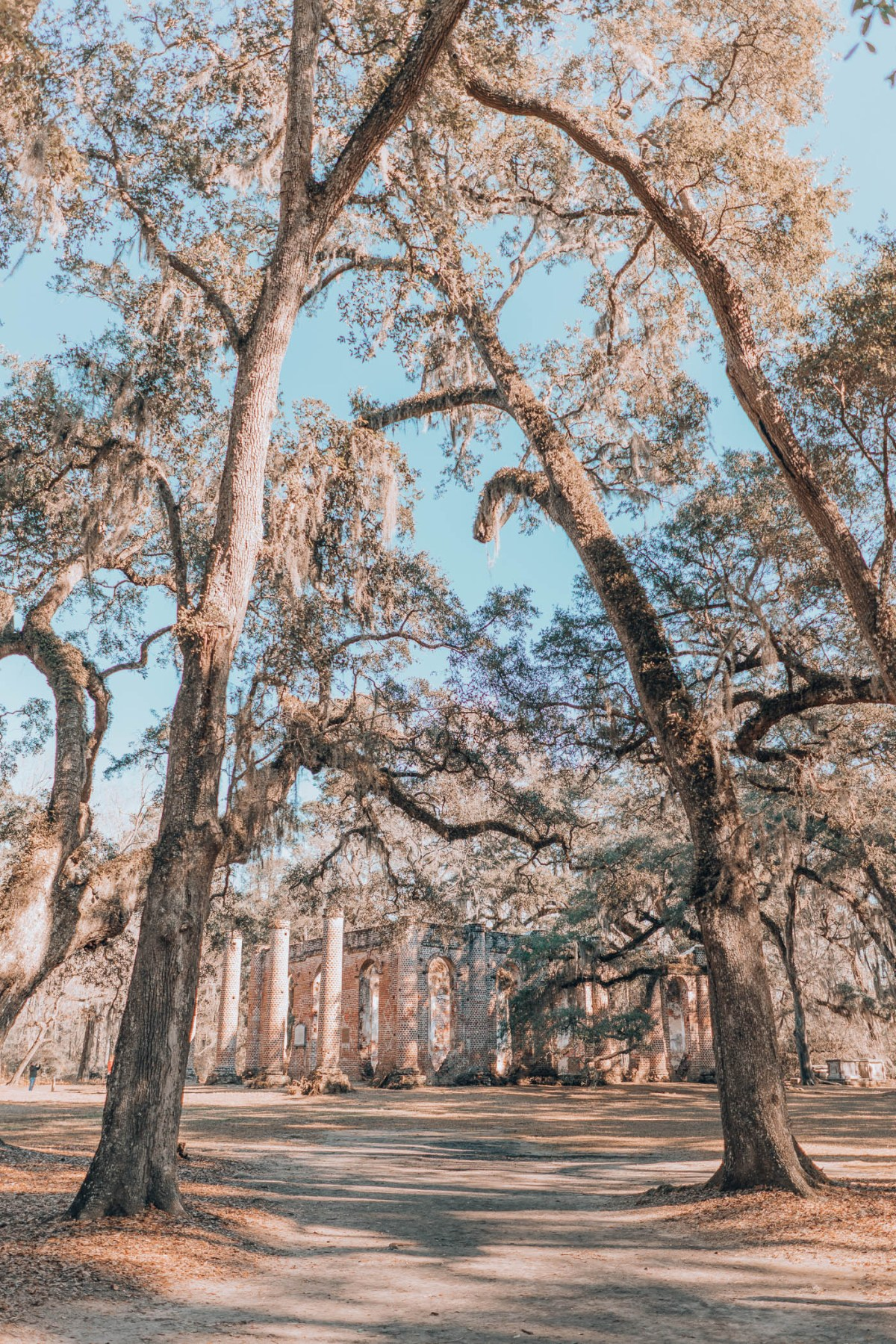 Old Sheldon Church Ruins, Exploring the Lowcountry