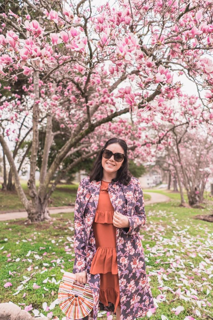 Magnolia Season in Georgia