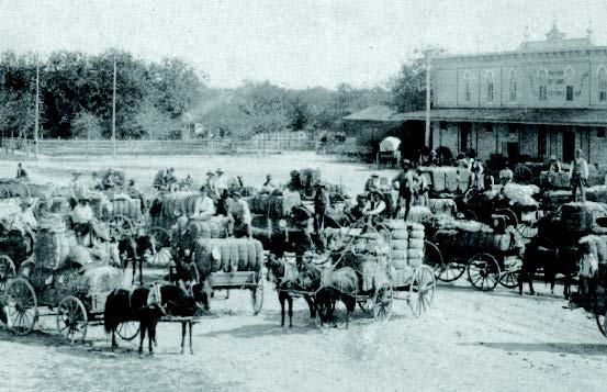 Cotton market on Main Plaza, 1890.