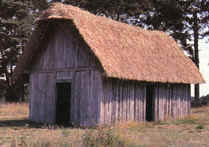 The Lifestyle of Medieval Peasants History Learning Site