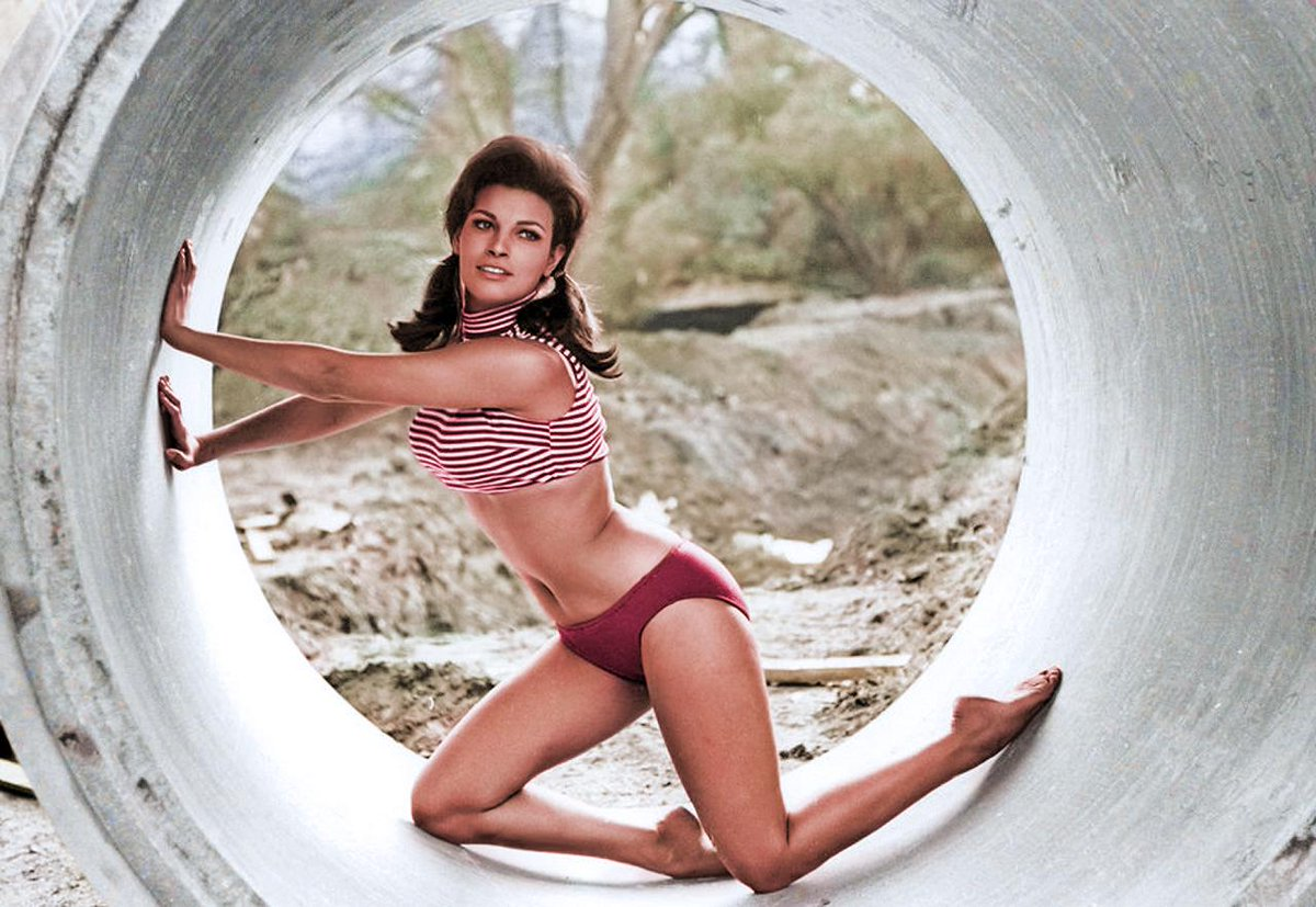 What Did  Raquel Welch Look Like  52 Ago