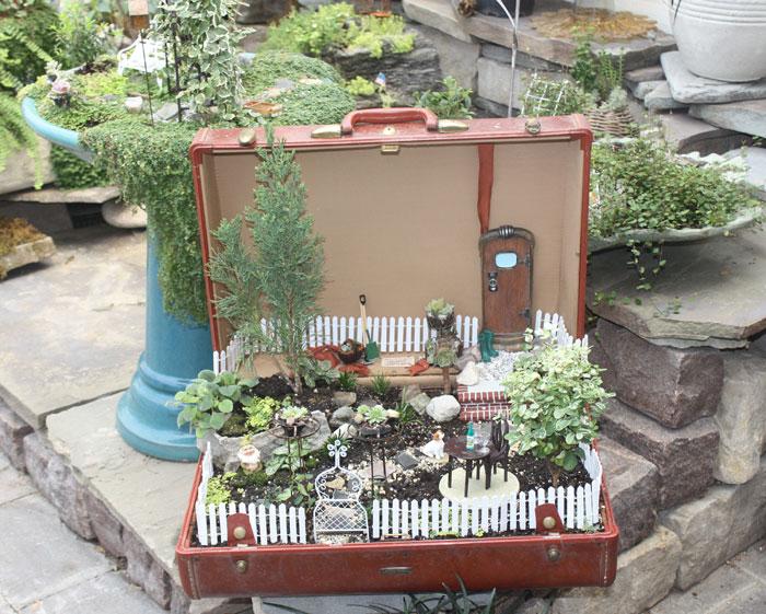 The Little World of Miniature Gardens