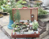 The Little World of Miniature Gardens   The Lone Girl in a ...
