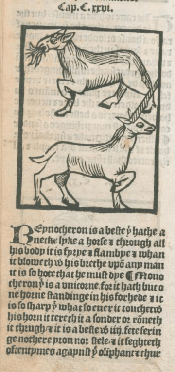 Unicorn Laurence Andrew the noble lyfe and natures of man of bestes serpentys fowles and fishes