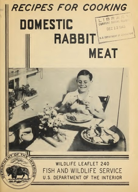 Recipes for Cooking Domestic Rabbit Meat