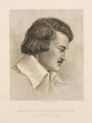 See caption. The black-and-white sketch has him in profile, facing right.