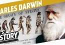 What Charles Darwin believed about the Races of Man: No such thing as Equality!