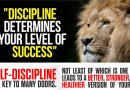 Video & Audio: The Core Values that Unite the White Race: Part 6: Discipline & Self-Discipline
