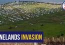 Video: S.Africa: How blacks invade a Wine Farm in Stellenbosch
